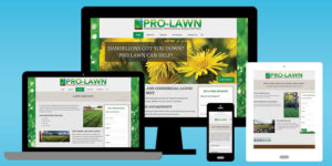 Pro-Lawn Website - BNG Design - West Fargo, ND