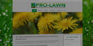 Pro Lawn website design and development - Professional fertilizing and weed control - BNG Design - Fargo, ND
